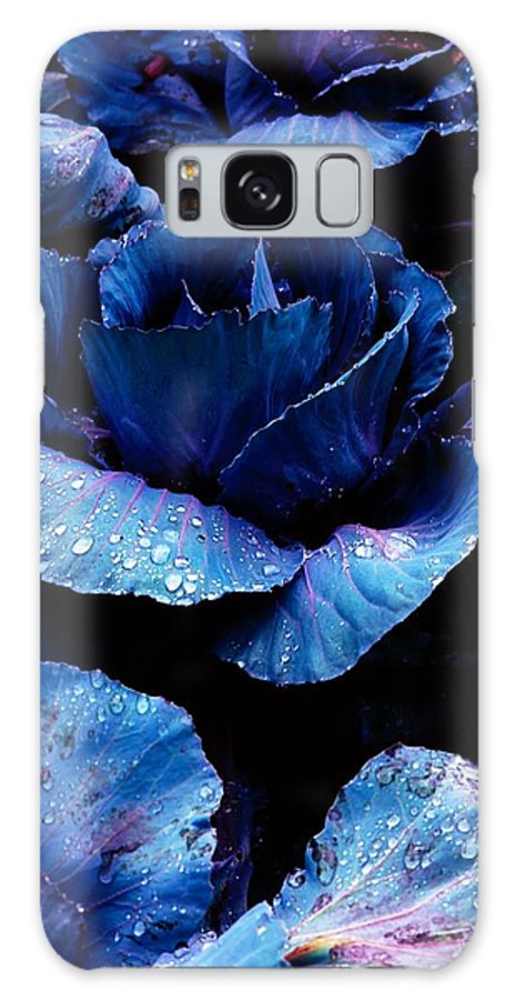 Bloom Galaxy S8 Case featuring the photograph Vegetables, Red Cabbage by The Irish Image Collection