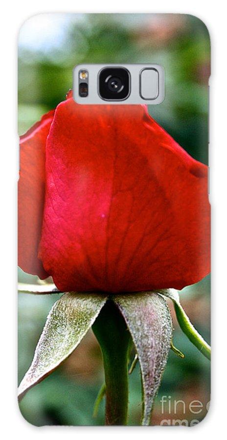 Garden Galaxy S8 Case featuring the photograph Velvet by Susan Herber