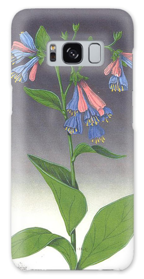 Wildflowers Galaxy S8 Case featuring the mixed media Viriginia Bluebells by Ken Bloomhorst