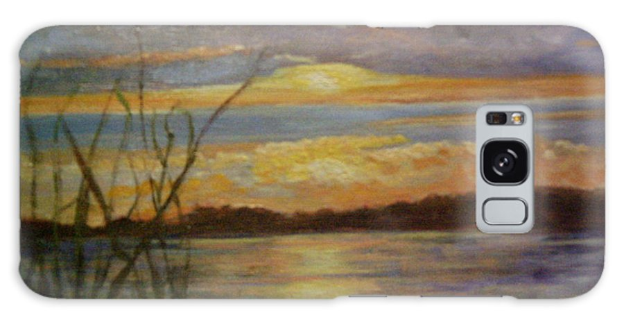 Sunset Galaxy S8 Case featuring the painting Wetland by Marcia Hero