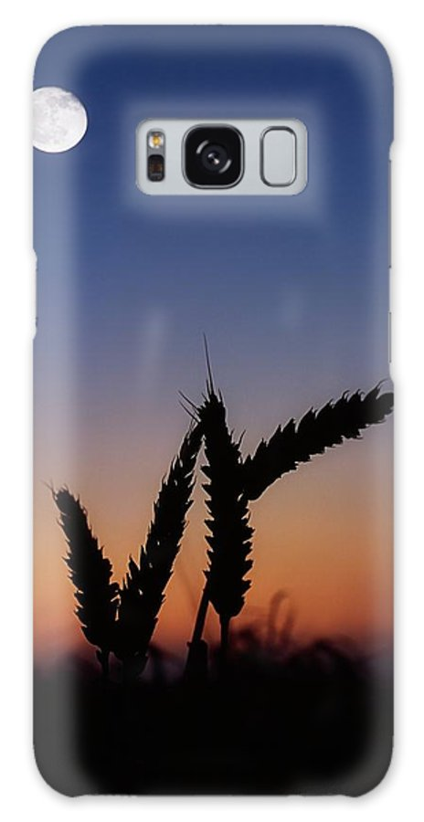 Close Up Galaxy S8 Case featuring the photograph Wheat, Harvest Moon by The Irish Image Collection