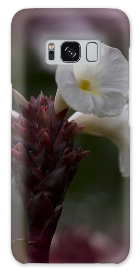 White Galaxy S8 Case featuring the photograph White Bromeliad Flowers by Douglas Barnard