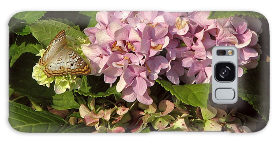 Floral Galaxy S8 Case featuring the photograph White Peacock On Hydrangea by Peg Urban
