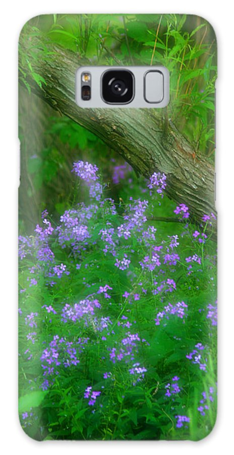 Beautiful Galaxy S8 Case featuring the photograph Wildflower Dreams by Cindy Haggerty