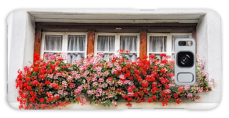 Window Galaxy S8 Case featuring the photograph Windows With Red Flowers by Mats Silvan