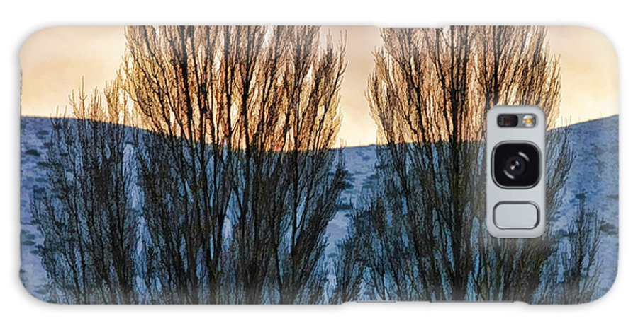 Fine Art Photographers Galaxy S8 Case featuring the photograph Winter Morning by Blake Richards