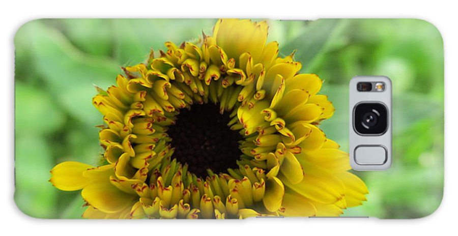Flowers Galaxy S8 Case featuring the photograph Yellow Bud by Tina M Wenger