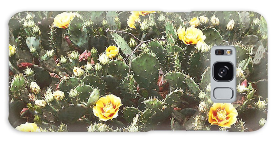 Flowers At Lazy 5 Ranch Galaxy S8 Case featuring the photograph Yellow Cactus by Lee Hartsell