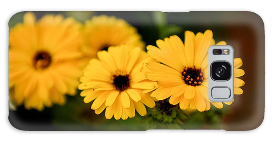 Flower Galaxy S8 Case featuring the photograph Yellow Chain by Syed Aqueel