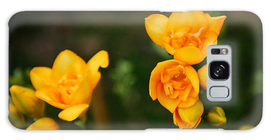 Flower Galaxy S8 Case featuring the photograph Yellow Flowers by Syed Aqueel