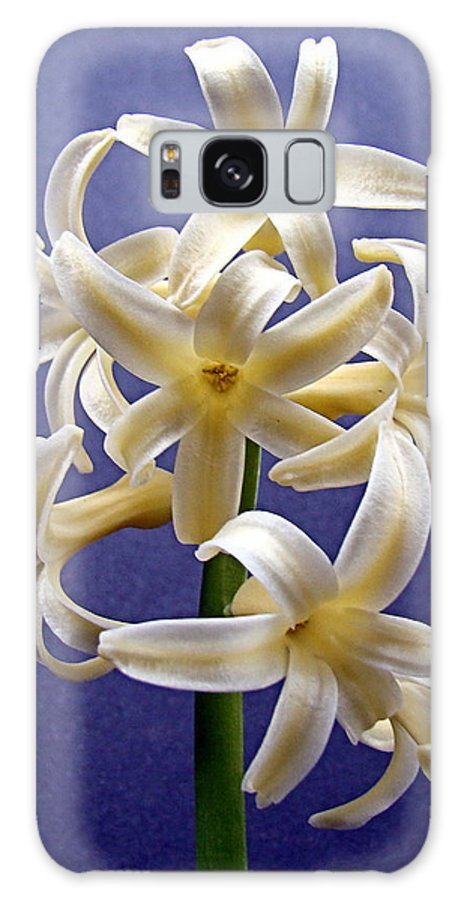 Hyacinth Galaxy S8 Case featuring the photograph Yellow Hyacinth by Nick Kloepping