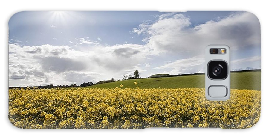 Cabe Galaxy S8 Case featuring the photograph Yellow Rapeseed Field, Newgrange by Peter McCabe