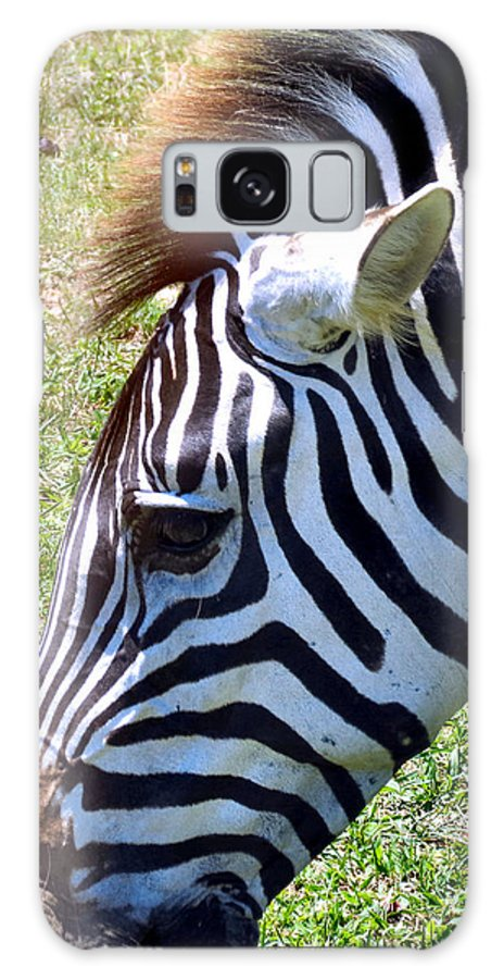 Black Galaxy S8 Case featuring the photograph Zebras by Art Dingo