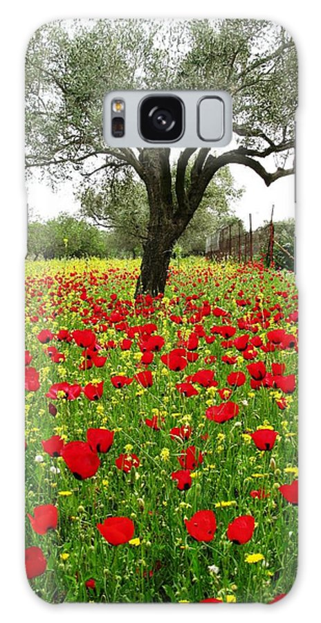 Old Olive Tree Galaxy S8 Case featuring the photograph Olive Amongst Poppies by Andonis Katanos