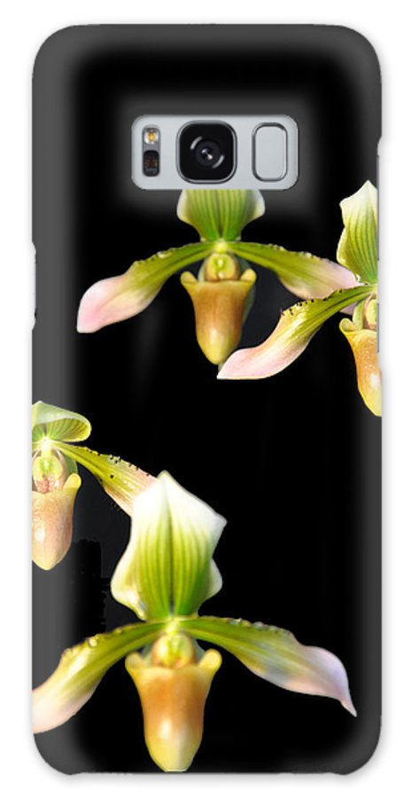 Music Galaxy S8 Case featuring the photograph Orchid Quads by Vijay Sharon Govender