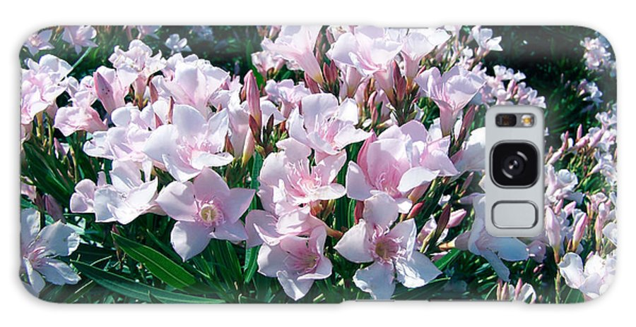 Flower Photography Galaxy S8 Case featuring the photograph Summer Oleander by Evelyn Patrick