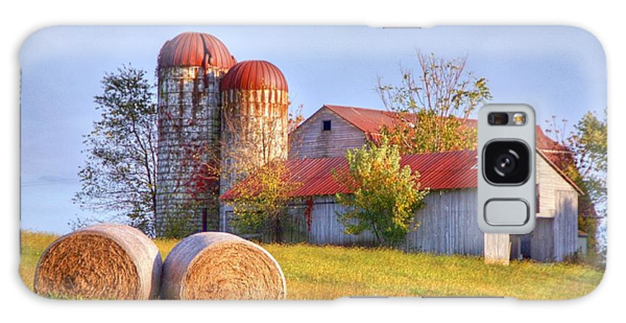 Barn Galaxy S8 Case featuring the photograph Two by Mitch Cat