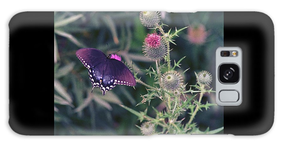 Butterfly Galaxy S8 Case featuring the photograph 060207-13 by Mike Davis