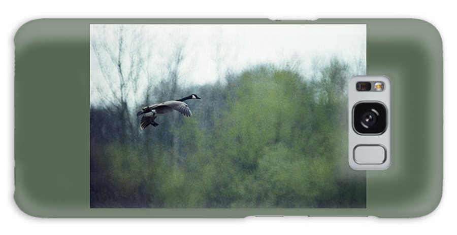 Canada Goose Galaxy Case featuring the photograph 070406-40 by Mike Davis