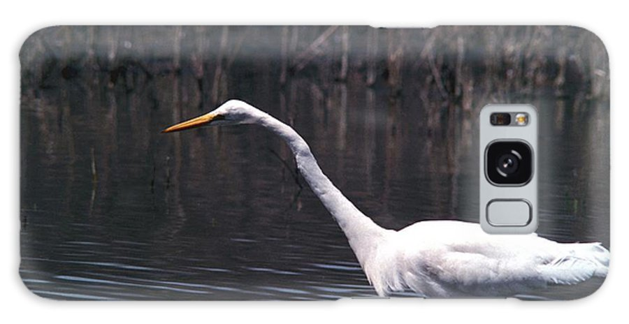 Great Egret Galaxy S8 Case featuring the photograph 070406-8 by Mike Davis