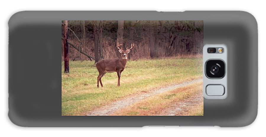 Deer Galaxy S8 Case featuring the photograph 070506-17 by Mike Davis
