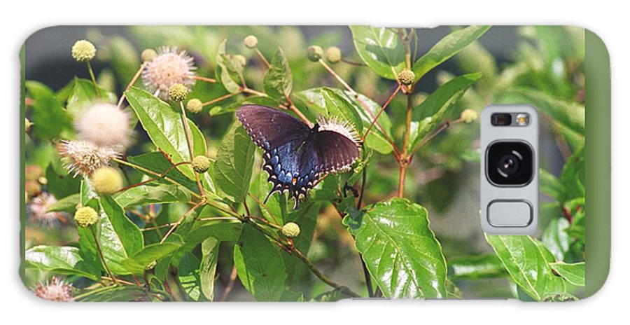 Butterfly Galaxy Case featuring the photograph 080706-6 by Mike Davis