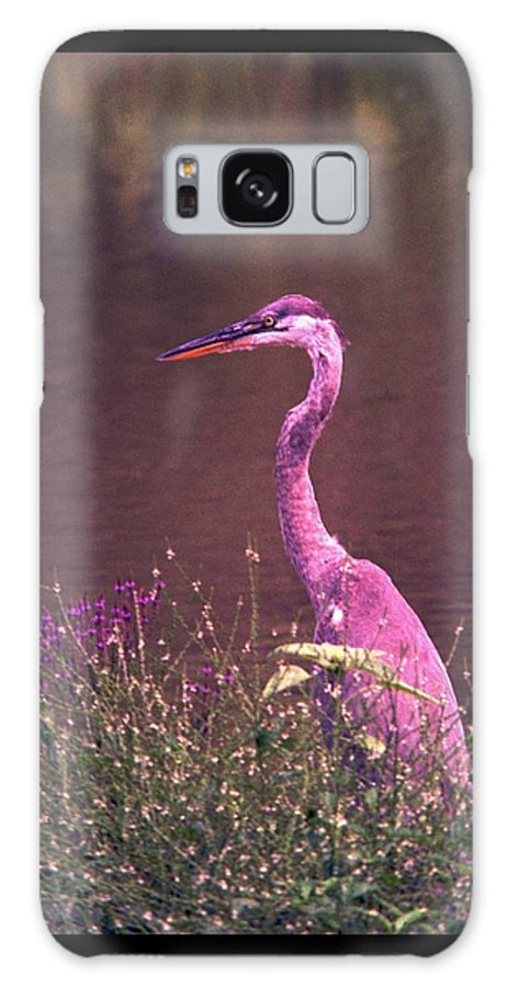 Great Blue Heron Galaxy S8 Case featuring the photograph 080706-12 by Mike Davis
