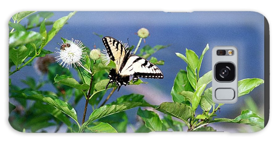 Butterfly Galaxy Case featuring the photograph 080706-7 by Mike Davis