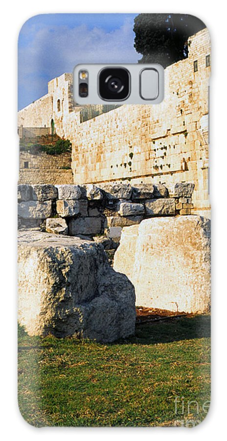 Israel Galaxy S8 Case featuring the photograph Archaeological Garden Southern Temple Mount by Thomas R Fletcher