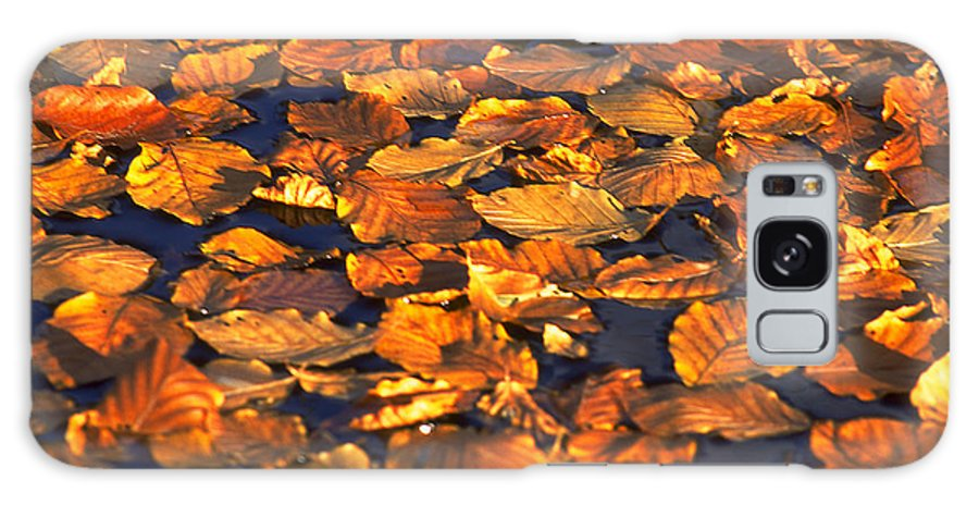 Leaves Galaxy S8 Case featuring the photograph Autumn Leaves by Michael Mogensen