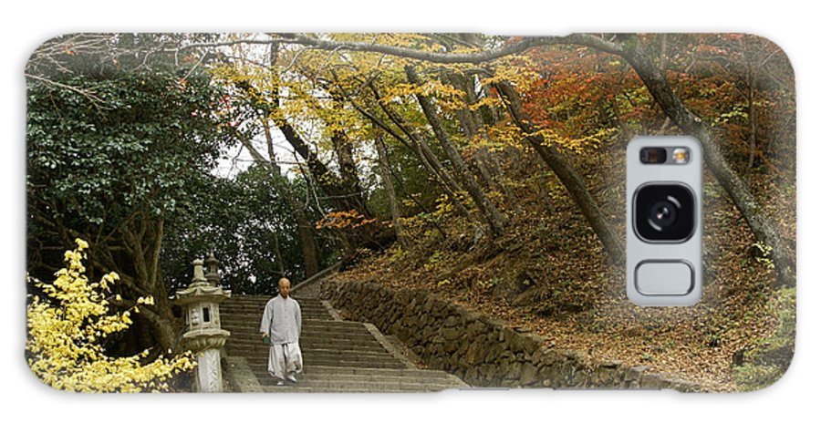Asia Galaxy S8 Case featuring the photograph Autumn Stairway by Michele Burgess