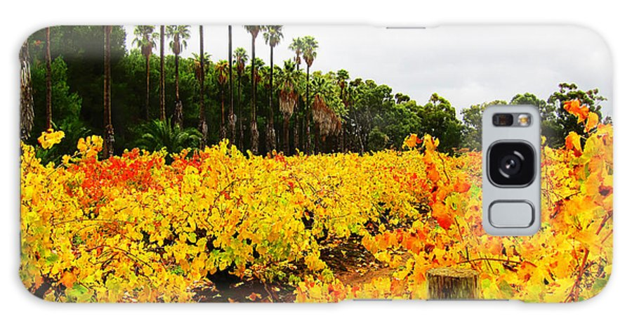 Vineyard Galaxy S8 Case featuring the photograph Autumn Vines by Douglas Barnard