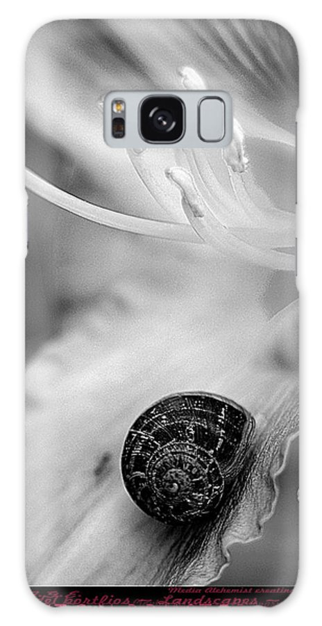 Clay Galaxy Case featuring the photograph B And White Floral With Snail by Clayton Bruster