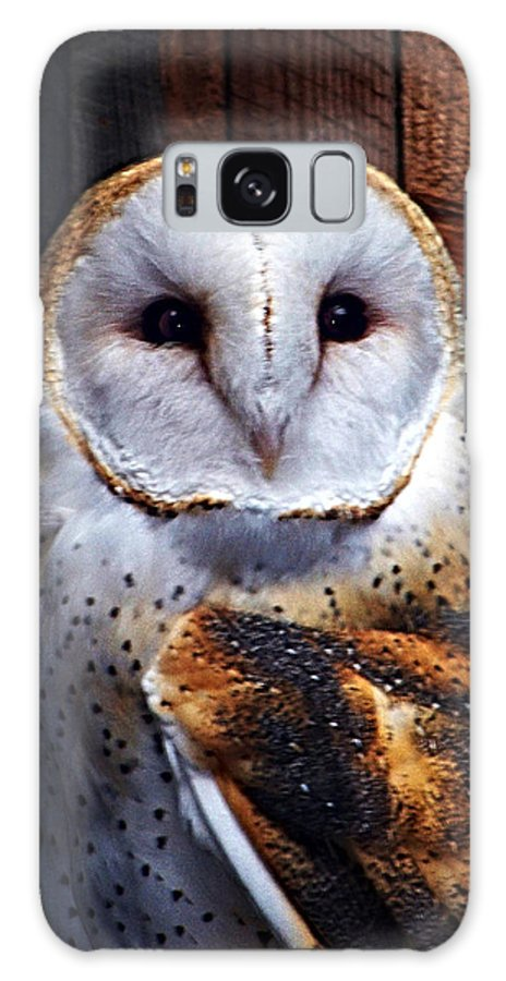 Digital Painting Galaxy S8 Case featuring the photograph Barn Owl by Anthony Jones