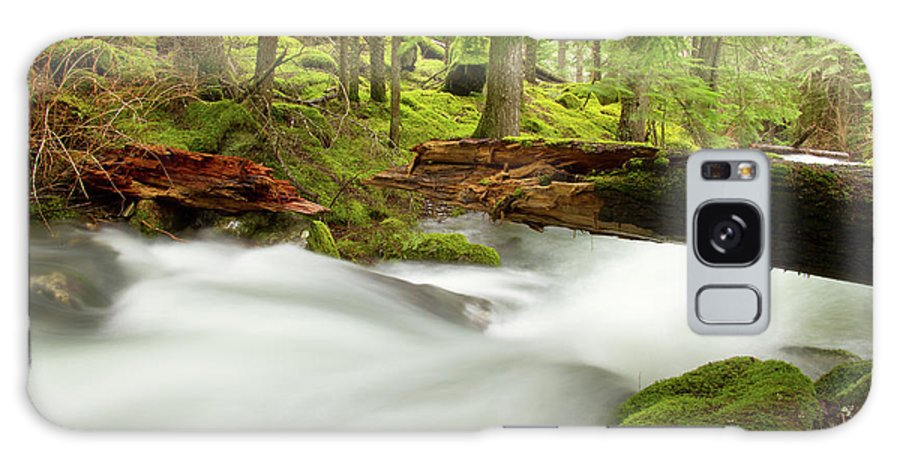 Beauty Creek Galaxy S8 Case featuring the photograph Beauty Creek by Idaho Scenic Images Linda Lantzy