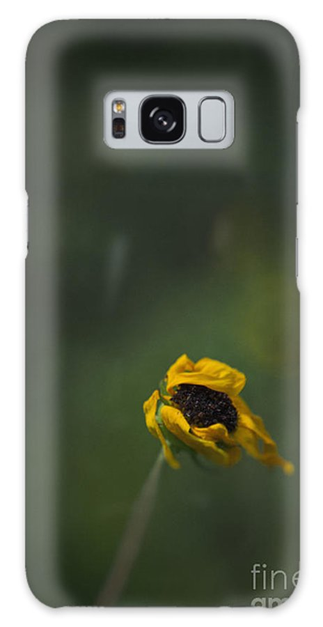 Flower Galaxy S8 Case featuring the photograph Blowing by Margie Hurwich