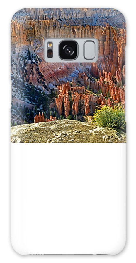 Bryce Canyon Galaxy S8 Case featuring the photograph Bryce by Martin Massari