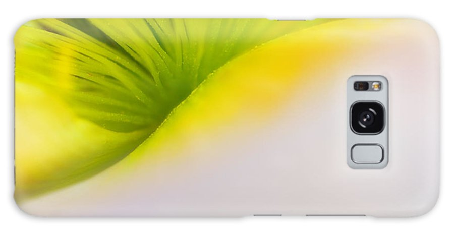 Poppy Galaxy S8 Case featuring the photograph California Poppy by Silke Magino