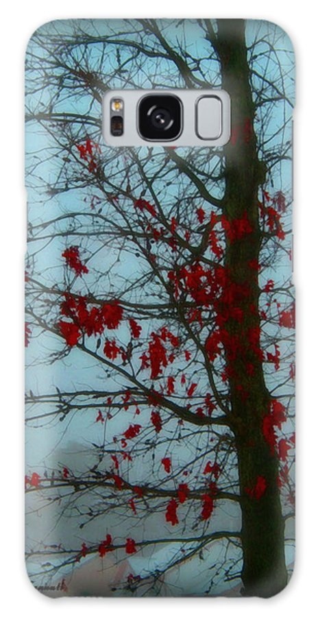 Tree Winter Nature Galaxy Case featuring the photograph Cold Day In Winter by Linda Sannuti