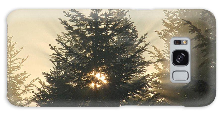 Nature Galaxy S8 Case featuring the photograph Dawn by Daniel Csoka