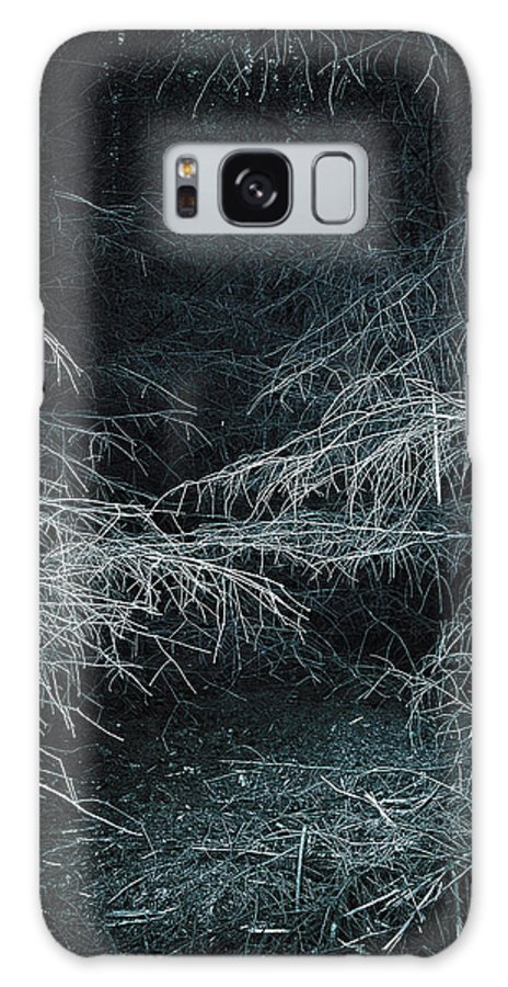 Birch Tree Galaxy S8 Case featuring the photograph Deep In Woods by Svetlana Sewell