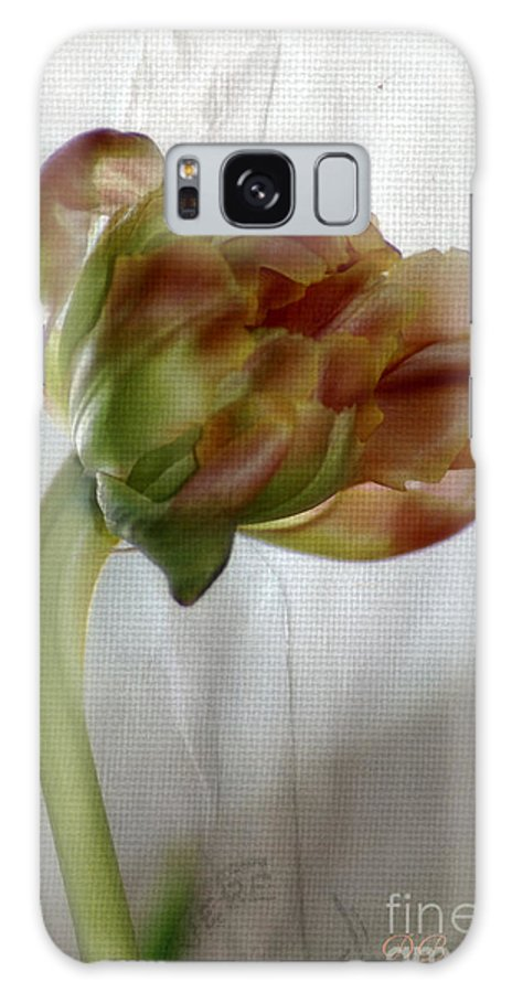 Garden Galaxy S8 Case featuring the photograph Faded Love Letters6 by Donna Bentley