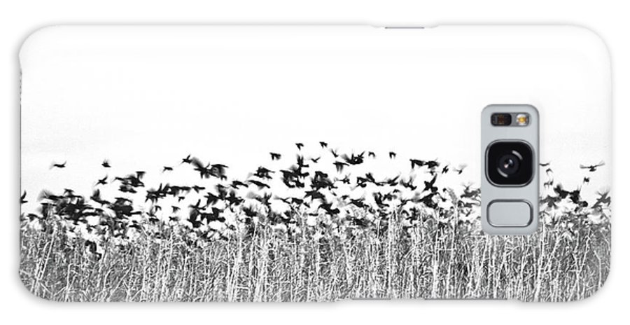 Birds Galaxy S8 Case featuring the photograph Flock by Lindy Pollard