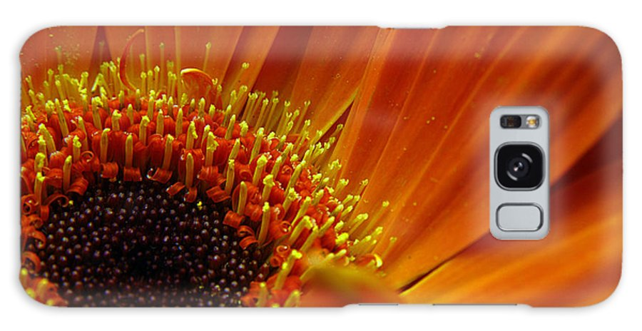 Clay Galaxy Case featuring the photograph Floral by Clayton Bruster