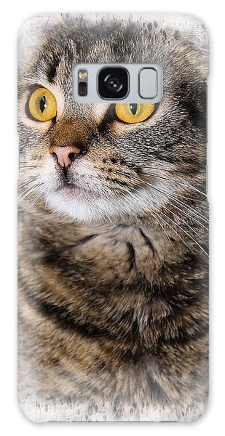 Cat Galaxy S8 Case featuring the photograph Goldeneye by Joyce Baldassarre