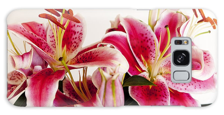 Flora Galaxy S8 Case featuring the photograph Graceful Lily Series 10 by Olga Smith