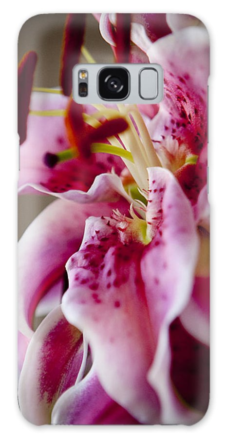 Flora Galaxy S8 Case featuring the photograph Graceful Lily Series 17 by Olga Smith