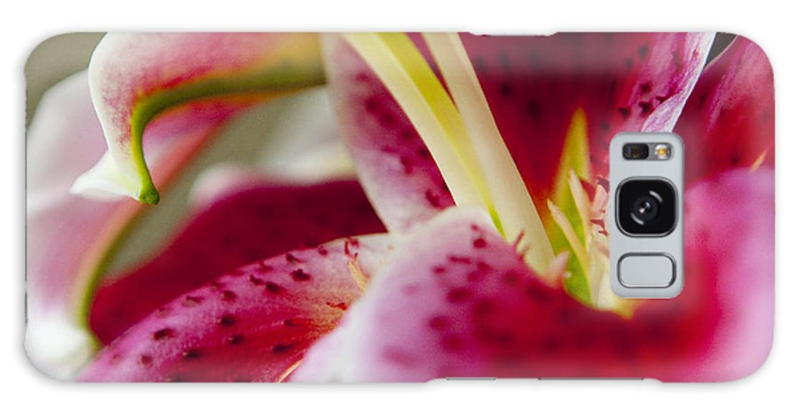 Flora Galaxy S8 Case featuring the photograph Graceful Lily Series 18 by Olga Smith