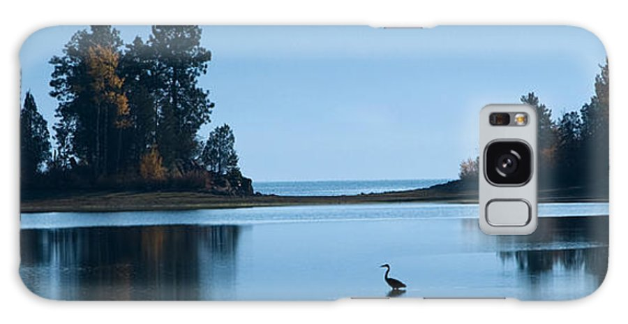 Heron Galaxy S8 Case featuring the photograph Hanging Out At Sunnyside by Marie-Dominique Verdier