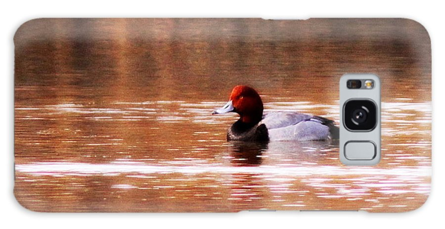 Redhead Galaxy S8 Case featuring the photograph Img_0001 - Redhead by Travis Truelove